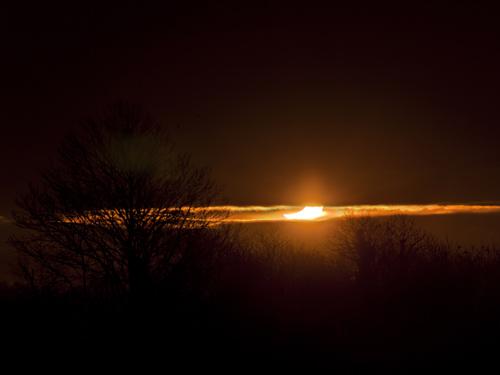 Une éclipse trop discrète dans Actualité locale 110104_4290-91