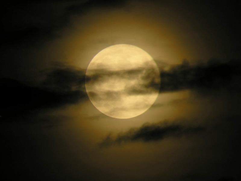 الليل والفجر حوار جميل
